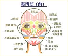 www.be-face.com
